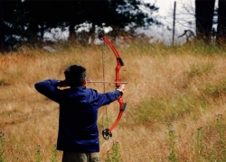 5 Best Bow Sights Reviews: For Bow-hunting and Shooting!