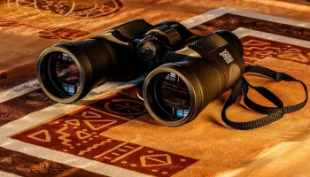 Best Hunting Binoculars Under $300 and $400: Top 5 Performers!