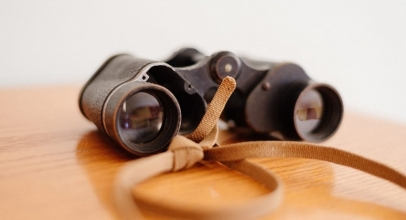 Which Binocular Magnification is Better: 8x, 10x or 12x?